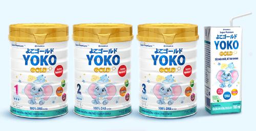 Yoko Gold được phân loại phù hợp với độ tuổi của bé