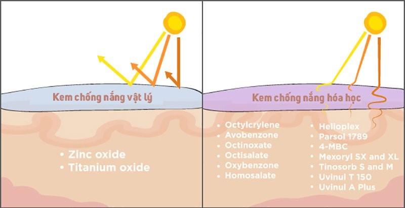 Cơ chế hoạt động của kem chống nắng