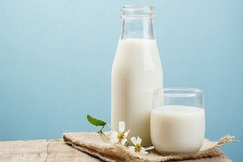 Mua sữa tươi không đường - online