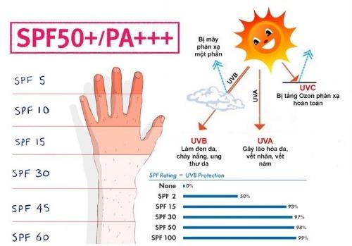 Kem chống nắng bảo vệ da khỏi tia UV độc hại