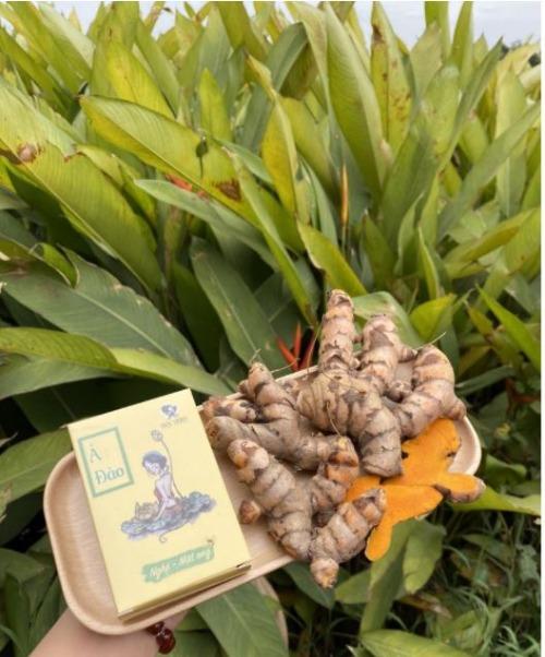 Xà bông nghệ - mật ong Mộc Nhan NATURAL
