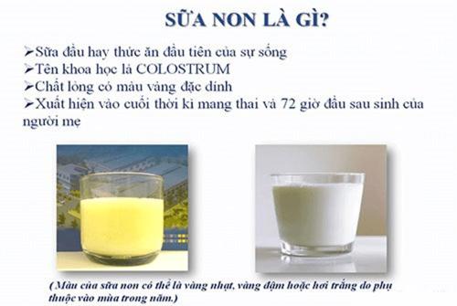 Sữa non là gì? Có tốt cho trẻ sơ sinh không?
